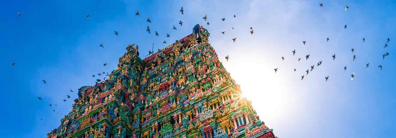 Dal Tamil Nadu al Kerala, viaggio nell'India più vera