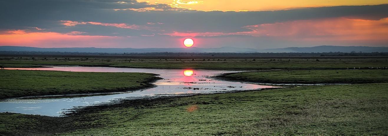 La natura selvaggia del Gorongosa N.P. per un'esperienza di safari fuo...