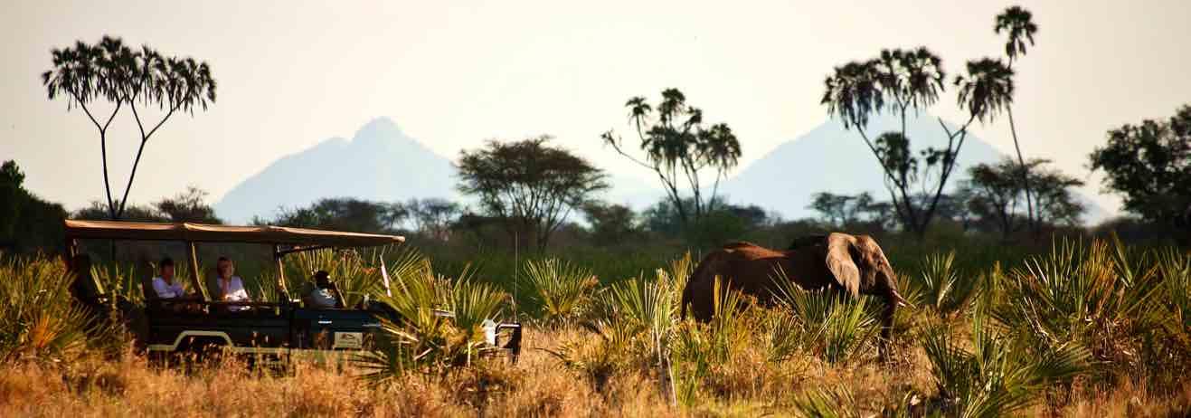 Esplorare il Kenya più autentico, con il privilegio di voli e lodge es...