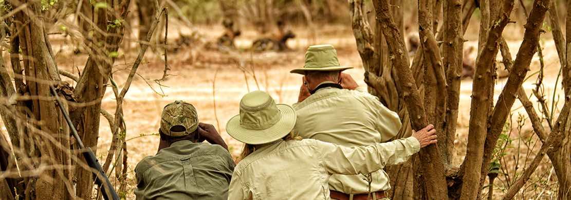 Il vero contatto con l'Africa incontaminata: safari incredibili e una...